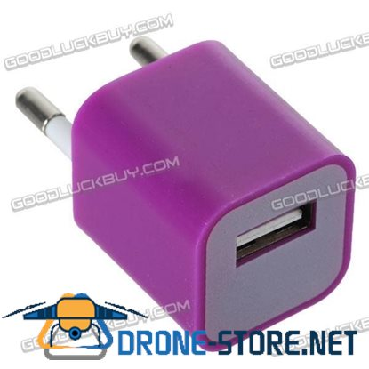 100-240V 1A 3G Power Adapter Plug Travel Adapter with USB Port-Purple