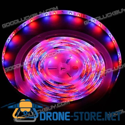 10m Multicolor SMD 3528 600 LED Flexible LED Chasing Strip Lamp w/Power + Remote