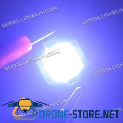 10W 2000K Bright Chip for Breeding Lamp from Taiwan